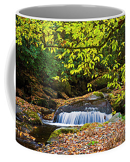 Big Creek Waterfall Coffee Mug