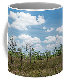 Coffee Mug featuring the photograph Big Cypress Marshes by Jon Glaser