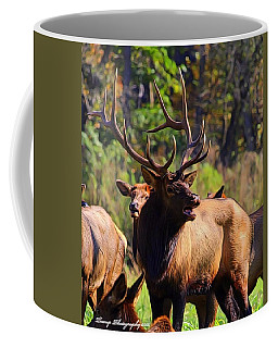 Big Elk Coffee Mug