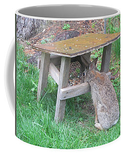 Big Eyed Rabbit Eating Birdseed Coffee Mug by Betty Pieper