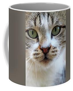 Coffee Mug featuring the photograph Big Green Eyes by Munir Alawi