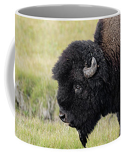Coffee Mug featuring the photograph Big Head by Ronnie and Frances Howard
