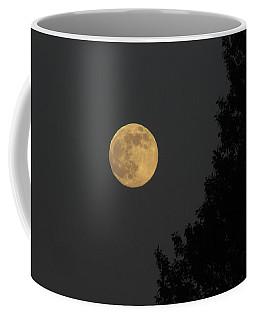 Big Leaf Moon Coffee Mug