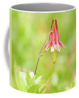Big Meadows Columbine Coffee Mug