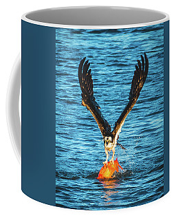 Big Orange Koi Fish Wins Coffee Mug