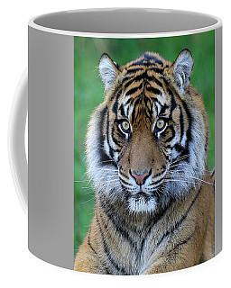 Big Stare Coffee Mug