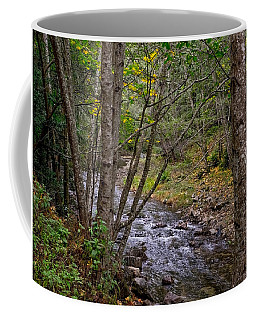 Big Sur River Near The Grange Hall Coffee Mug