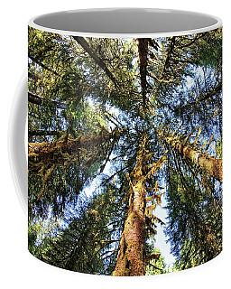 Big Trees In Olympic National Park Coffee Mug