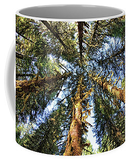 Big Trees In Olympic National Park Coffee Mug