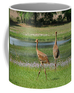 Big World Coffee Mug