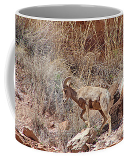 Bighorn Ram Of The Mountain Desert Coffee Mug