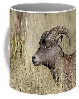 Bighorn Ram Portrait Coffee Mug