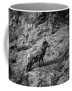 Bighorn Sheep Ewe On Wolf Creek Pass Coffee Mug