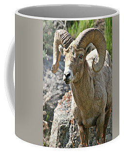 Bighorn Sheep Coffee Mug