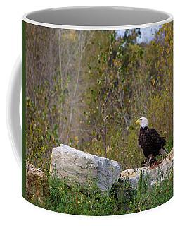 Bil-3 Coffee Mug