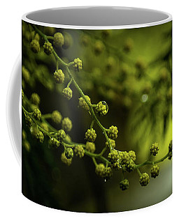 Bilbao Spain Tree Blossoms. Coffee Mug