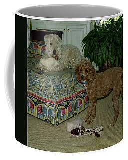 Coffee Mug featuring the photograph Binkley And  Ginger by Samuel M Purvis III