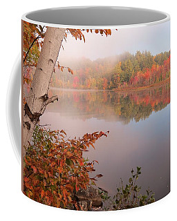 Birch And Beyond Coffee Mug by MTBobbins Photography