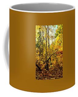 Birch Autumn Coffee Mug by Henryk Gorecki