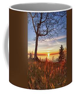 Birch Blaze Coffee Mug