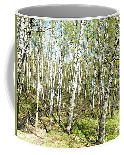 Birch Forest In Spring Coffee Mug