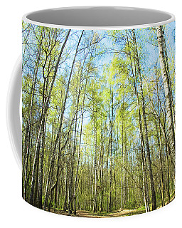 Birch Forest Spring Coffee Mug