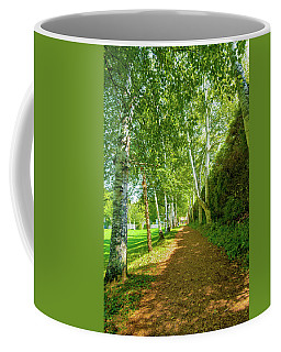 Coffee Mug featuring the photograph Birch Gauntlet by Greg Fortier
