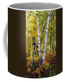 Birch In Gold Coffee Mug