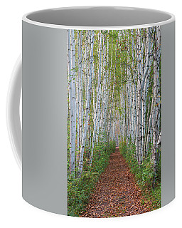 Birch Path Coffee Mug