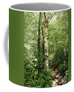 Birch Tree Hiking Trail Coffee Mug