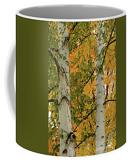 Birch Tree Coffee Mug