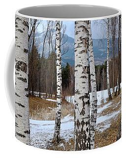 Birch Trees In The Alps Coffee Mug