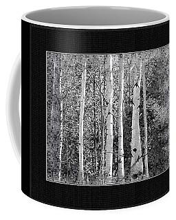 Coffee Mug featuring the photograph Birch Trees by Susan Kinney