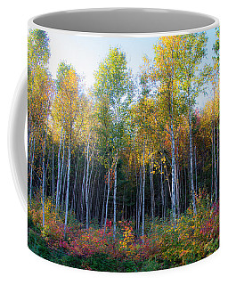 Coffee Mug featuring the photograph Birch Trees Turn To Gold by Jeff Folger