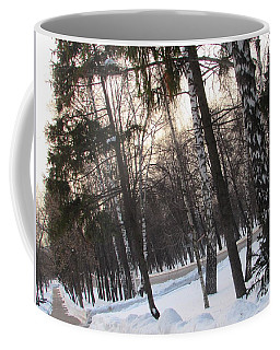 Birches And Firs Coffee Mug