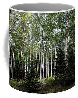 Birches Coffee Mug by Heather Applegate
