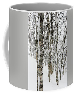 Coffee Mug featuring the photograph Birches In Snow by Alex Lapidus