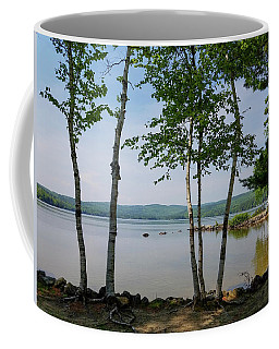 Birches On Pleasant Lake Coffee Mug