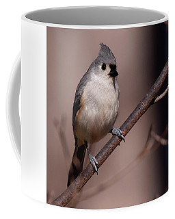 Bird 1 Coffee Mug