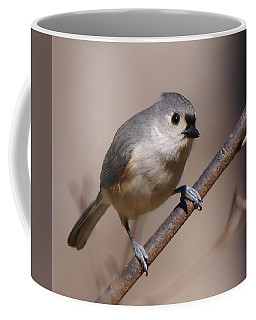 Bird 2 Coffee Mug