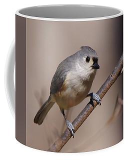 Bird 2 Coffee Mug