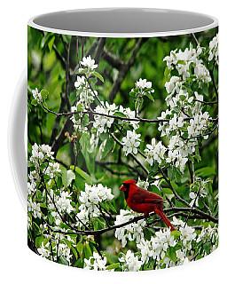 Bird And Blossoms Coffee Mug