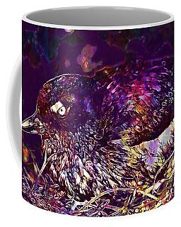 Bird Cassins Auklet Crested Birds  Coffee Mug