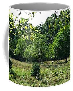 Bird Grounds Coffee Mug