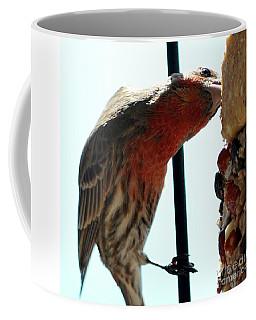 Bird Hits The Jackpot Coffee Mug