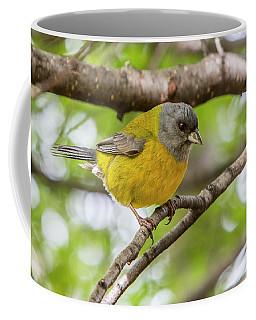Bird Life In Patagonia. Coffee Mug