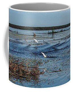 Bird Life, Lake Okeechobee Coffee Mug
