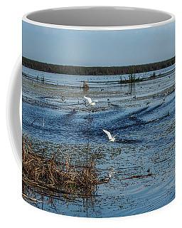 Bird Life, Lake Okeechobee Coffee Mug