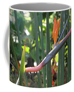 Bird Of Paradise Dripping Coffee Mug