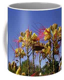 Bird Of Paradise Shrub Coffee Mug